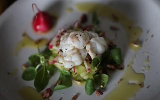 Ricetta insalata di gallinella al vapore con pomodori verdi, ravanelli ...