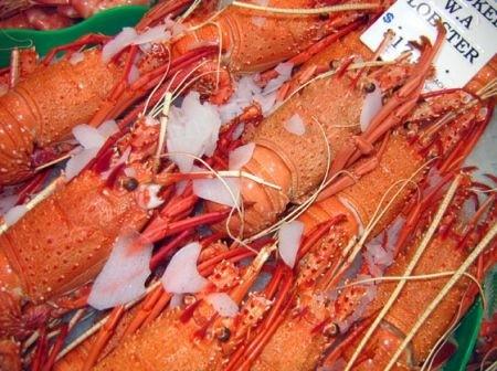 Ricetta aragosta al rosmarino