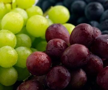 Ricetta tartellette con formaggio e uva