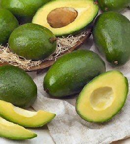 Ricetta bavarese di avocado con gamberi