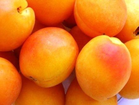 Ricetta torta di frutta estiva