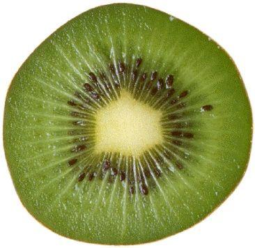 Ricetta scaloppine al kiwi