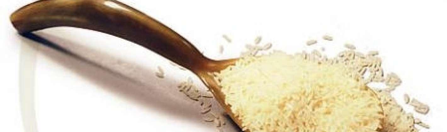Ricetta sformato di riso ai formaggi