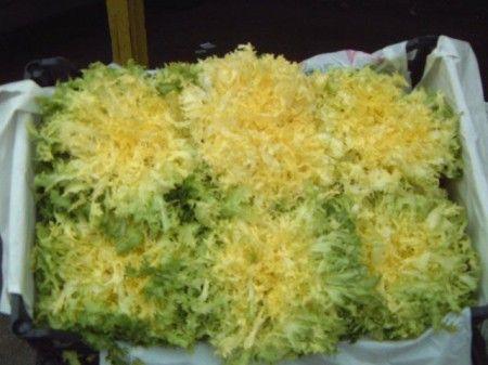 Ricetta insalata di indivia riccia, prosciutto, uova e mele