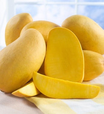 Ricetta spezzatino di pollo al mango
