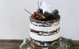 Ricetta naked cake al cioccolato