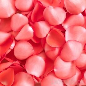 Ricetta aragosta alle rose