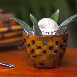 Gelato al cocco con la gelatiera