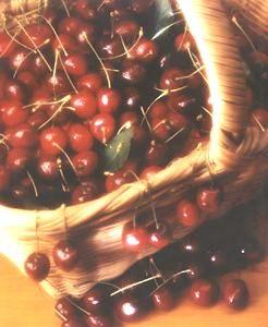 Ricetta ciliegie al barolo
