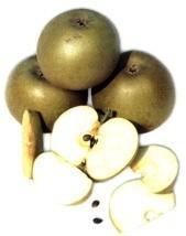 Ricetta insalata di mele e sedano