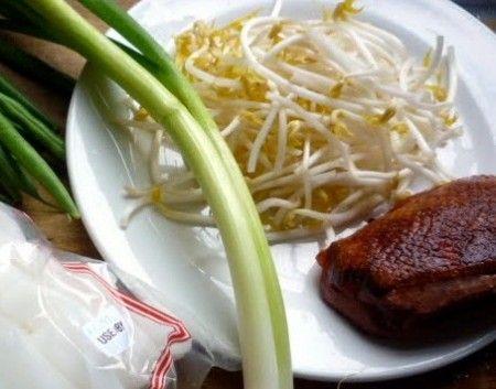 Ricetta petto d'anatra coi germogli di soia e radicchio