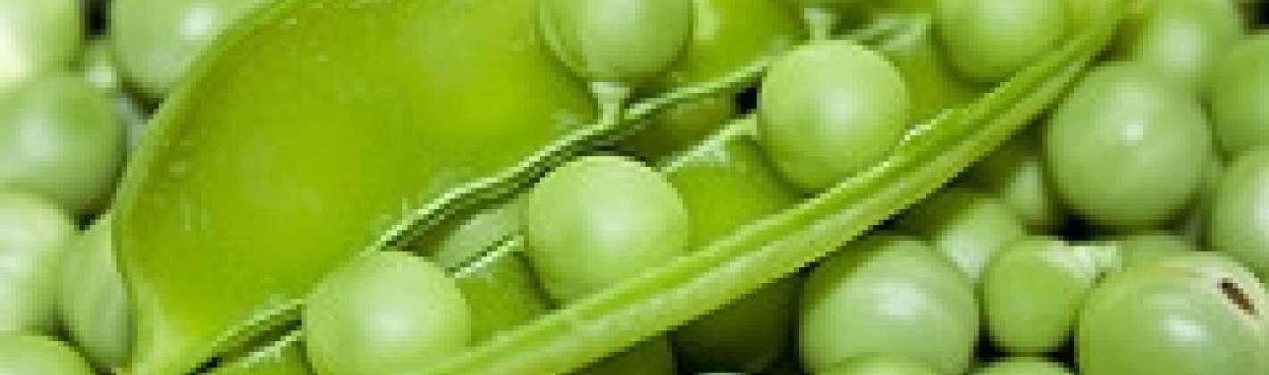 Ricetta pasta con mascarpone e piselli