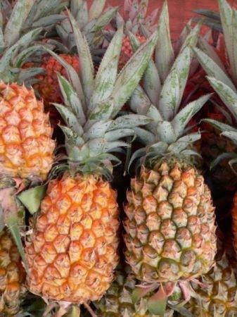 Ricetta ananas alla neve