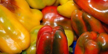 Ricetta salsa di peperoni