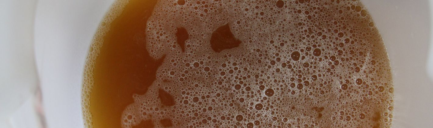 Ricetta come fare la birra