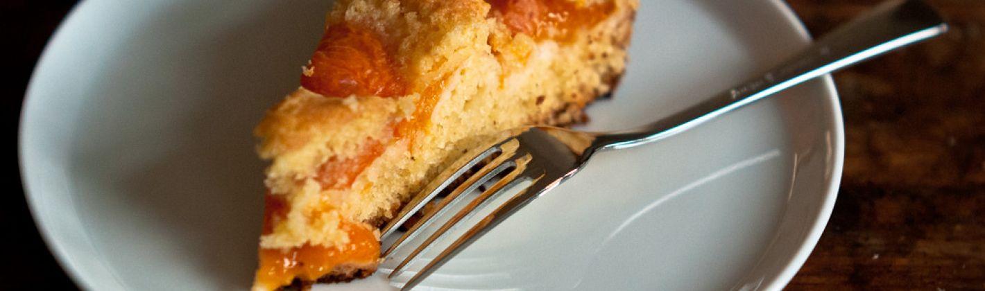Ricetta torta di albicocche e ricotta