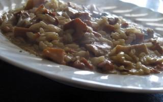 Ricetta risotto finferli e porcini