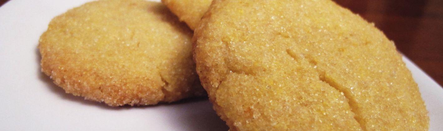 Ricetta biscotti senza zucchero per diabetici