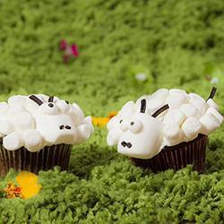 Pecorelle di cupcakes
