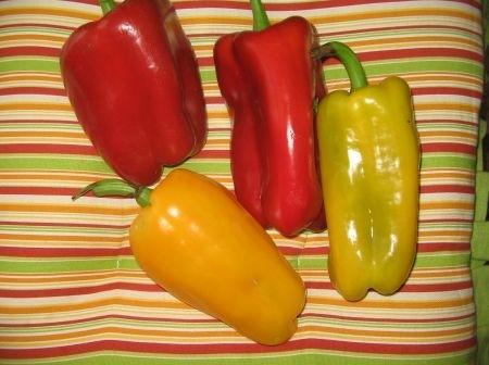 Ricetta maccheroni con peperoni e basilico