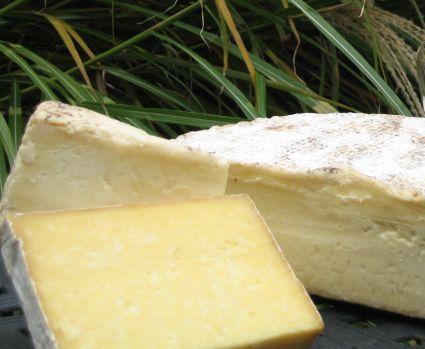 Ricetta bastoncini al formaggio chester